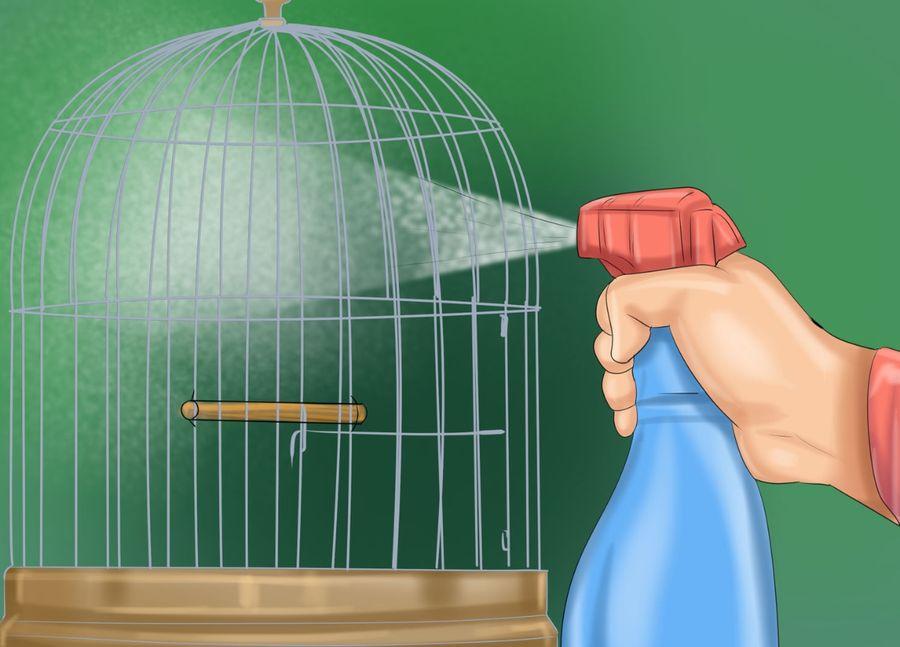 паразиты у волнистых попугаев что делать