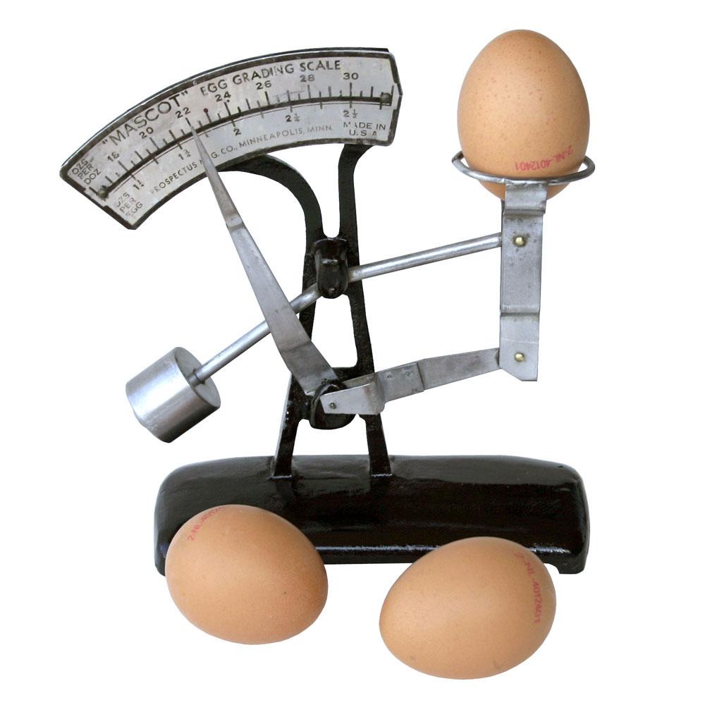 Сколько весит куриное яйцо сырое без скорлупы